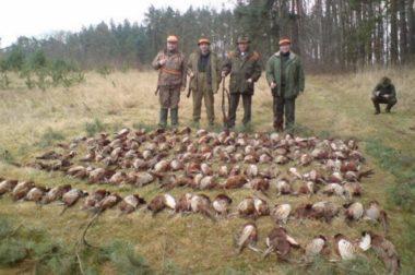 Stanowisko w sprawie łowiectwa w Polsce
