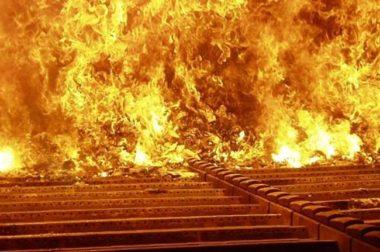 Wyrzucić czy spalić?