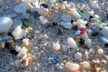 Stanowisko w sprawie stosowania <p>mikroplastików w kosmetykach