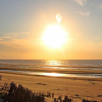 <small> Specyfika Bałtyku &#8211; fauna i flora w morzu i na styku z lądem <p> &#8211; streszczenie wystąpienia </small>