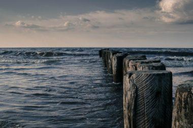 Organizacje pozarządowe wzywają kraje bałtyckie <p>do przyspieszenia realizacji planu działań <p>na rzecz Morza Bałtyckiego