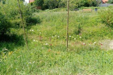 Ogrody w dzielnicy Kokoszki <p>Park Azaliowy z Ogrodem Deszczowym