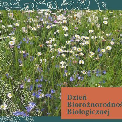 Bioróżnorodność